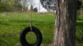 Swing Tree Wallpaper For Mobile#1