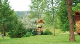 Swing Tree Wallpaper Free