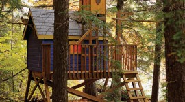 Tree Houses Wallpaper For Android#1