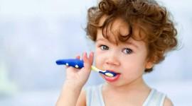 4K Brush Teeth Photo Free