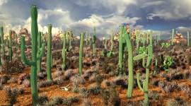4K Cactus Photo#1