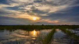 4K Marshland Photo