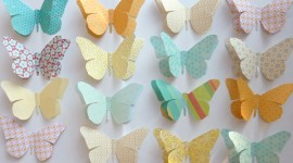 Butterflies Wall Photo Download