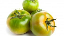 Green Tomatoes Desktop Wallpaper For PC