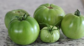 Green Tomatoes Wallpaper Full HD