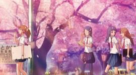 Kimi No Suizou Wo Tabetai For PC