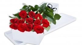 Long Roses Wallpaper For PC