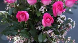 Long Roses Wallpaper Gallery