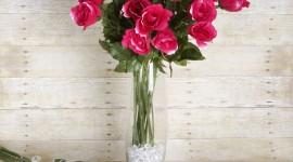 Long Roses Wallpaper HQ