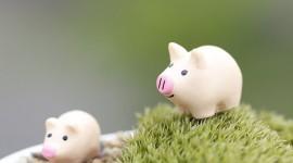 Pig Figurine Wallpaper Gallery