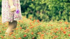 4K Flowers Field Wallpaper Free