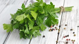 4K Parsley Wallpaper Download