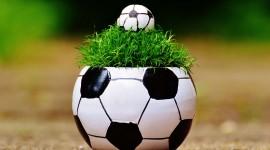 4K Soccer Ball Photo