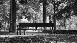 Bench Alone Image Download