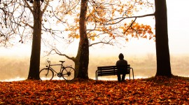 Bench Alone Photo