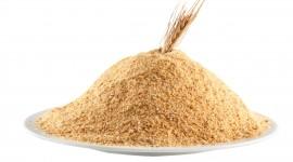 Bread Crumbs Image Download