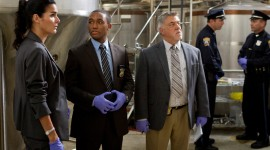 Bruce McGill Wallpaper Background