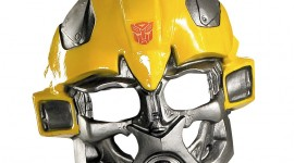 Bumblebee Mask Aircraft Picture