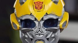 Bumblebee Mask Photo