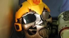 Bumblebee Mask Photo Free