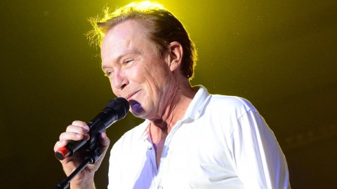 David Cassidy wallpapers high quality