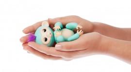 Fingerlings Photo