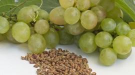 Grape Oil Best Wallpaper