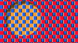 Optical Illusions Picture Download#1