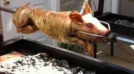 Pig On A Spit Wallpaper Background