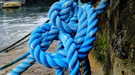Sea Rope Photo Download