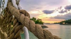 Sea Rope Photo Free