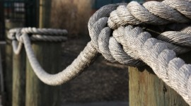 Sea Rope Picture Download
