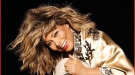 Tina Turner Wallpaper Free