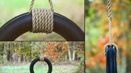 Tire Swing Photo