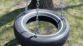 Tire Swing Photo Free