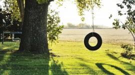 Tire Swing Wallpaper
