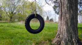 Tire Swing Wallpaper For IPhone Free