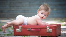 4K Baby Suitcase Wallpaper HQ