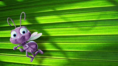 A Bug's Life wallpapers high quality