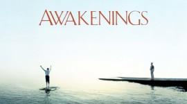 Awakenings Wallpaper