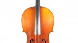 Cello Wallpaper Download Free