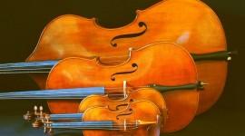 Cello Wallpaper For Desktop