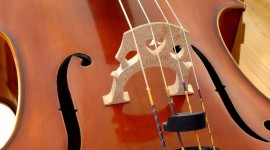 Cello Wallpaper For PC