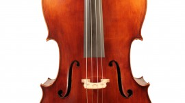 Cello Wallpaper Free