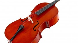 Cello Wallpaper High Definition