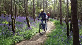 Downhill Cycling Best Wallpaper