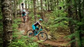 Downhill Cycling Desktop Wallpaper Free
