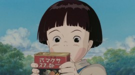 Grave Of The Fireflies Photo