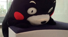 Kumamon Wallpaper
