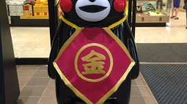 Kumamon Wallpaper For IPhone Free